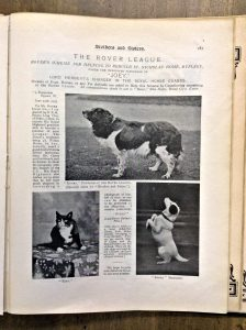 'Rover' the founder of the Rover League is featured here in the top photograph