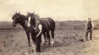 The Standon boys were trained in all aspects of farm work, and they had over 50 acres of land to cultivate. Experience in manual skills was helpful for the boys in their future careers.